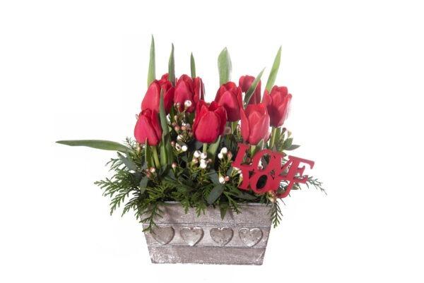 caja de tulipan rojo